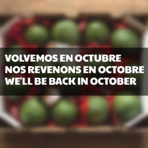 01.aguacate_box