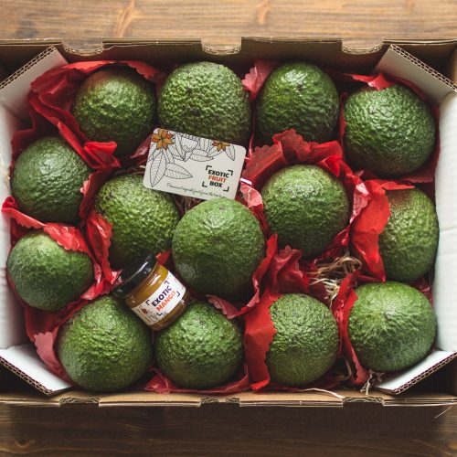 Avocat Hass box