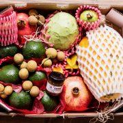 proteciones fruta tropicales