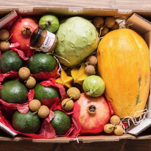 cesta de frutas tropicales
