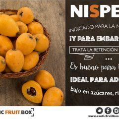 nispero