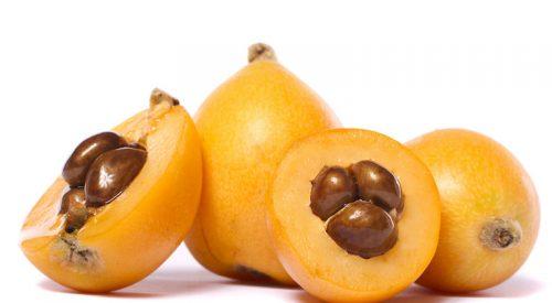 Níspero fruta rica en fibra