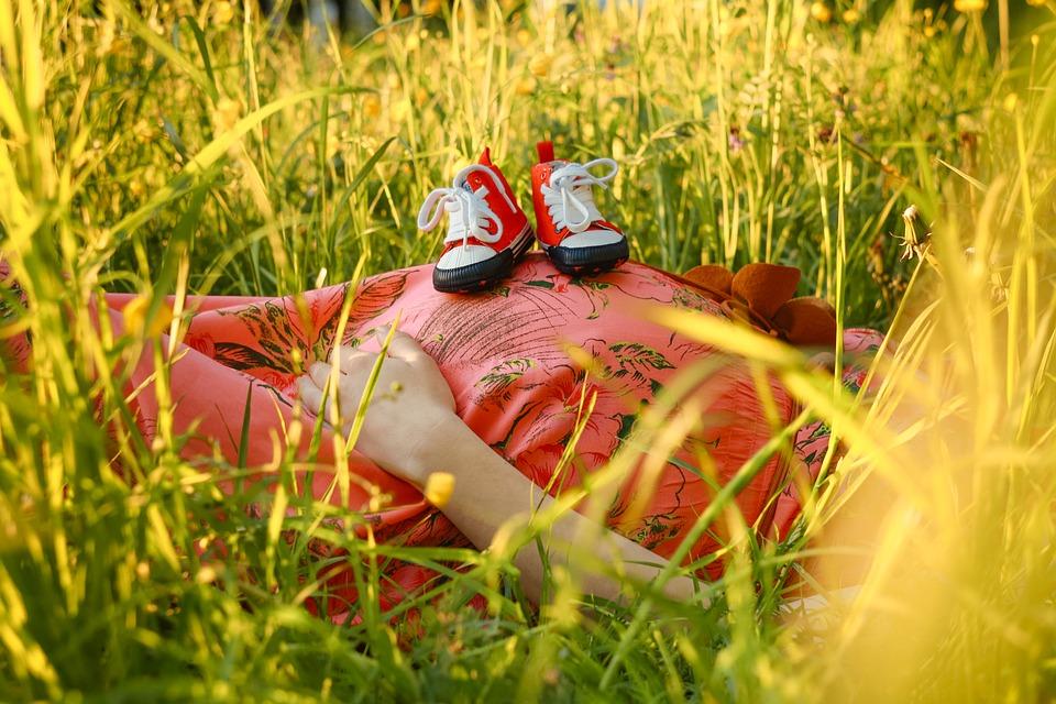 beneficios de la chirimoya durante el embarazo