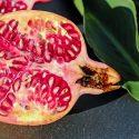 Die antioxidative Kraft des Granatapfels und ihre Wirkung auf den Körper