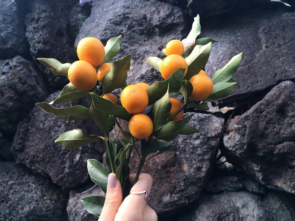 frutas tropicales con efecto afrodisiaco