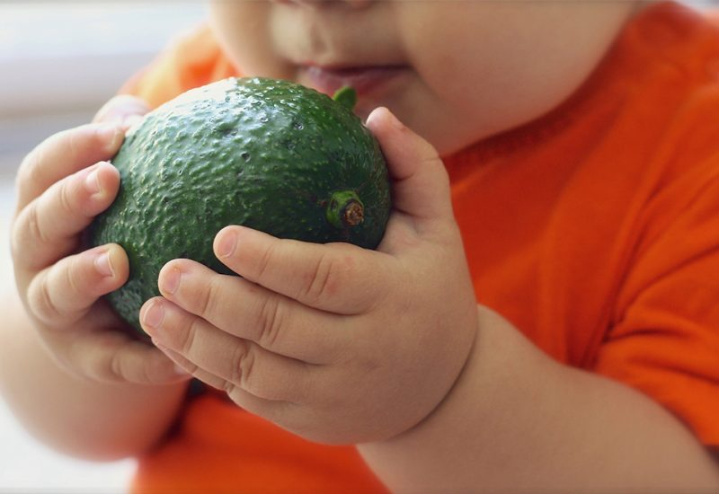 aguacate nutricion infantil exotic fruit box